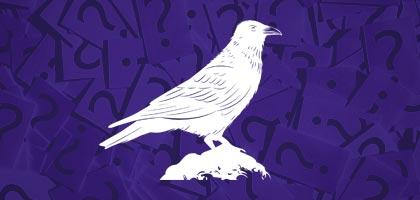 Birds Shakun