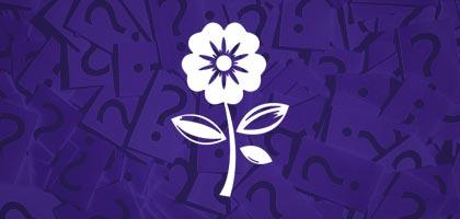 Flower Shakun