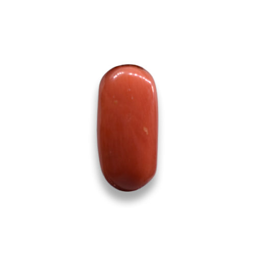 Energized Siddh Coral Gemstone