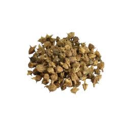 Gokhru Herb
