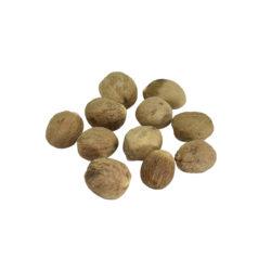 Jaiphal Herb
