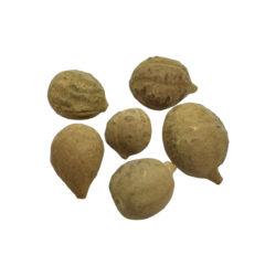 Baheda Herb