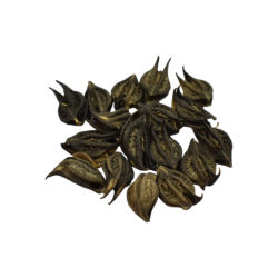Bichhu Phal Herbs