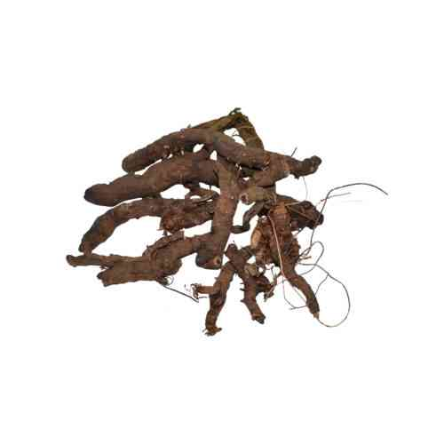 Anjwar Herb