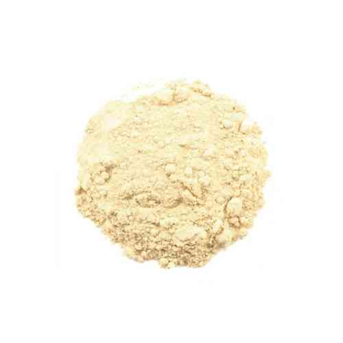 Babul Phali Powder Herbs