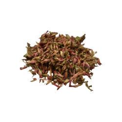 Dhataki Herbs