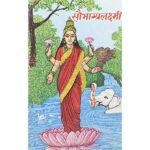 Saubhagya Lakshmi Book