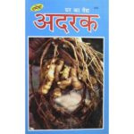 Ghar Ka Vaidy Ginger Book