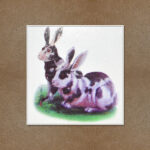 Rabbits Pair, Rabbit Pairs, Rabbits Pairs