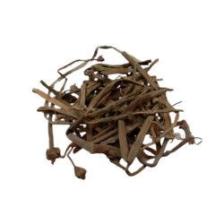 Netrabala Herb